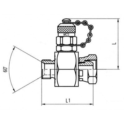 In line check-coupling BSP 60º