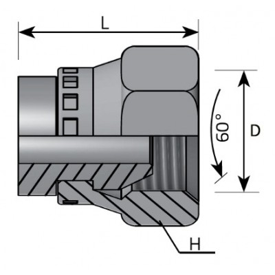 Swivel Female Plug BSPP