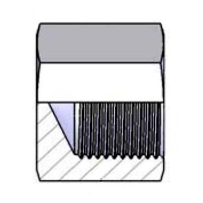Fixed Female Plug Inch