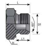 BSP GAS 60º male plug
