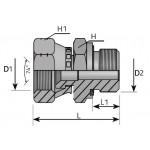 Male Adapter BSP Loca Nut JIC