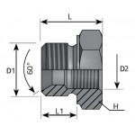 Reducer Plug Adapter Male -...