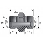 Male Adapter - Male BSPP Inch