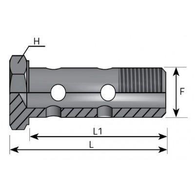 BSP GAS 60º double bolt