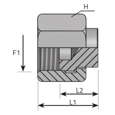ORFS Female Plug
