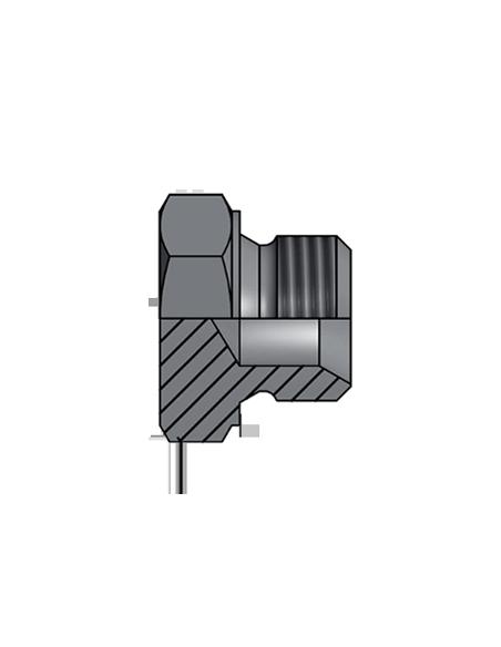 BSP GAS 60º Hexagonal